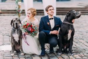 Brautpaar posiert für ein Hochzeitsfoto mit zwei Hunden