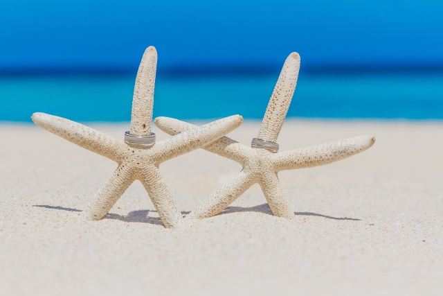 Hochzeitsringe auf Seesterne am Meer gesteckt